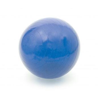 ABS Rehabilitation Exercise Ball